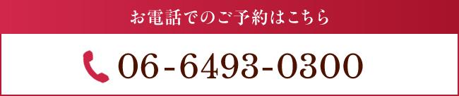 06-6493-0300
